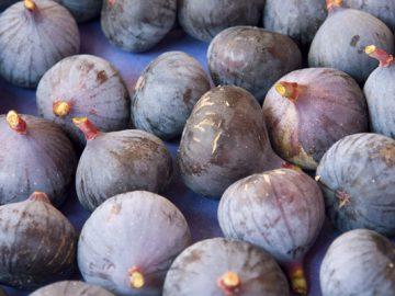 figs_sm