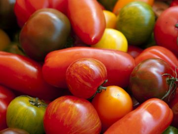 tomates2_sm